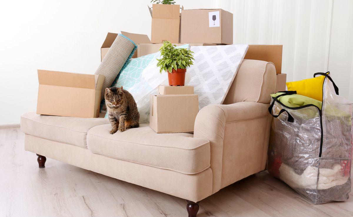 Получение права собственности на квартиру с обременением после сдачи в эксплуатацию